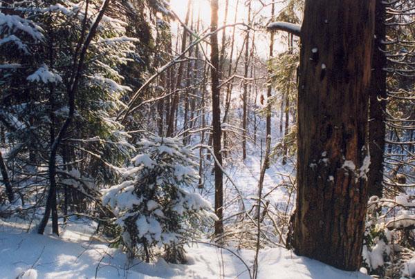 http://turizm.lib.ru/img/c/chuksin_n/winter_t/ew36.jpg