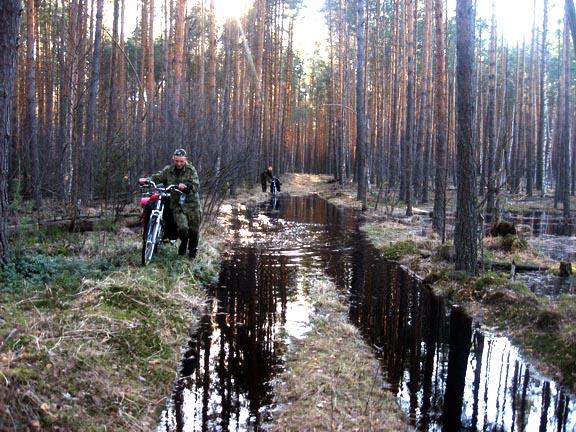 ЛЕСОКРУТ. Подгорицкая лужа в лесу