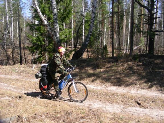 ЛЕСОКРУТ. На лесной дороге