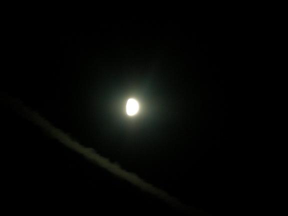 ЛЕСОКРУТ. Луна над Марфинским лесом