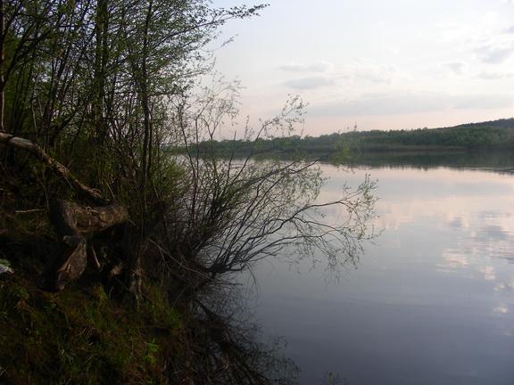 ЛЕСОКРУТ. Окский берег