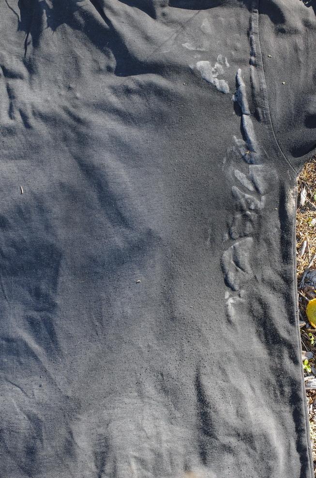 Якутия 2018. Путешествие по хребту Сунтар-Хаята. Часть первая: заезд в район и заход в горы