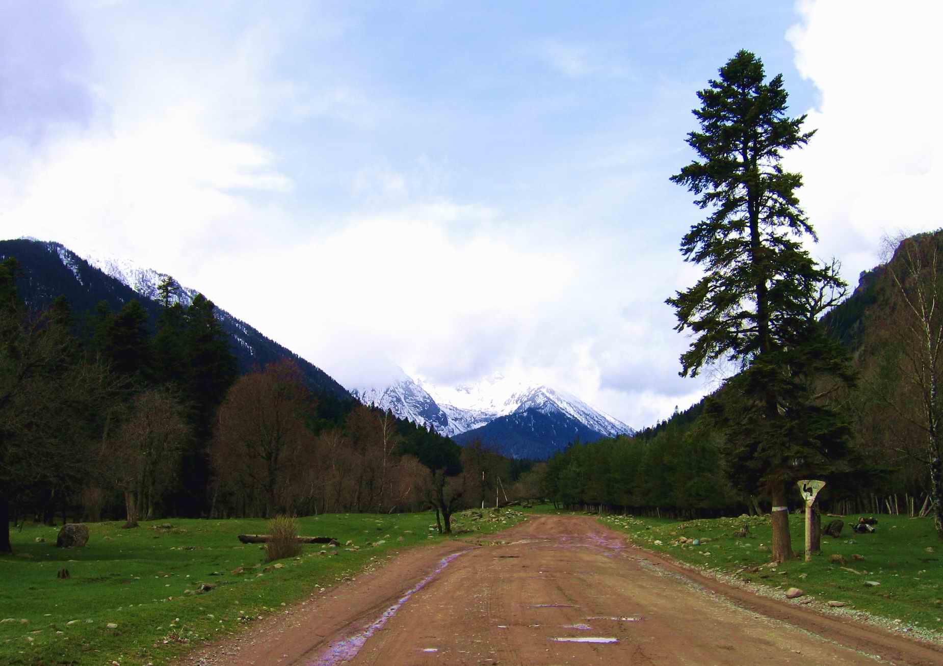 Кавказские горы около реки большой
